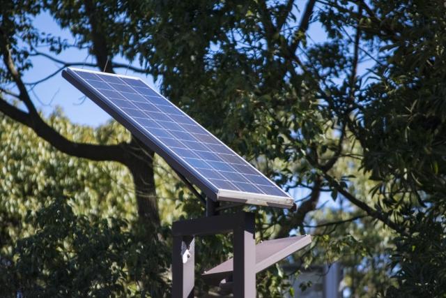 太陽光投資で注意したい動物対策