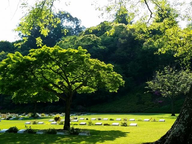 墓地を買い取ってもらう時の注意点